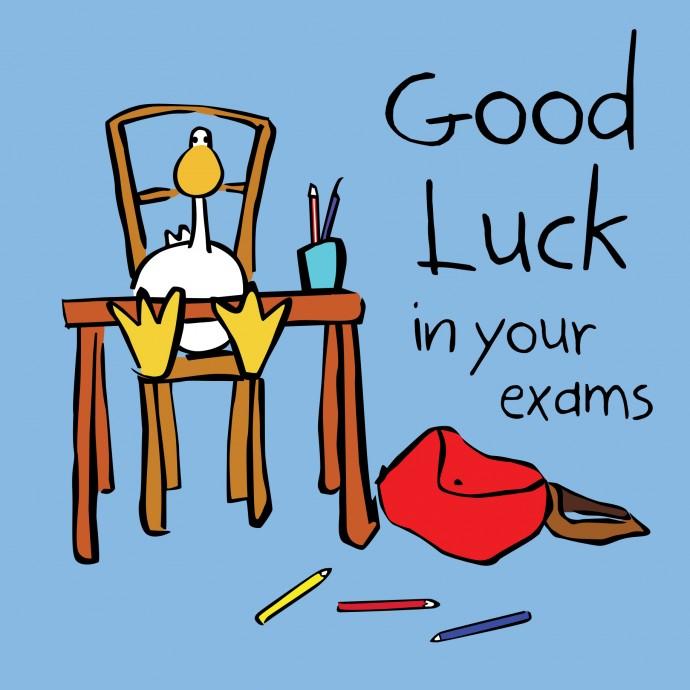 690x690 Good Luck In Exams 690x690.jpg Arts