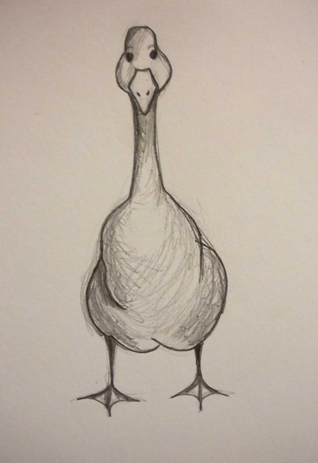 1099x1600 What About A Duckgoose From Various Angles Sketchbook