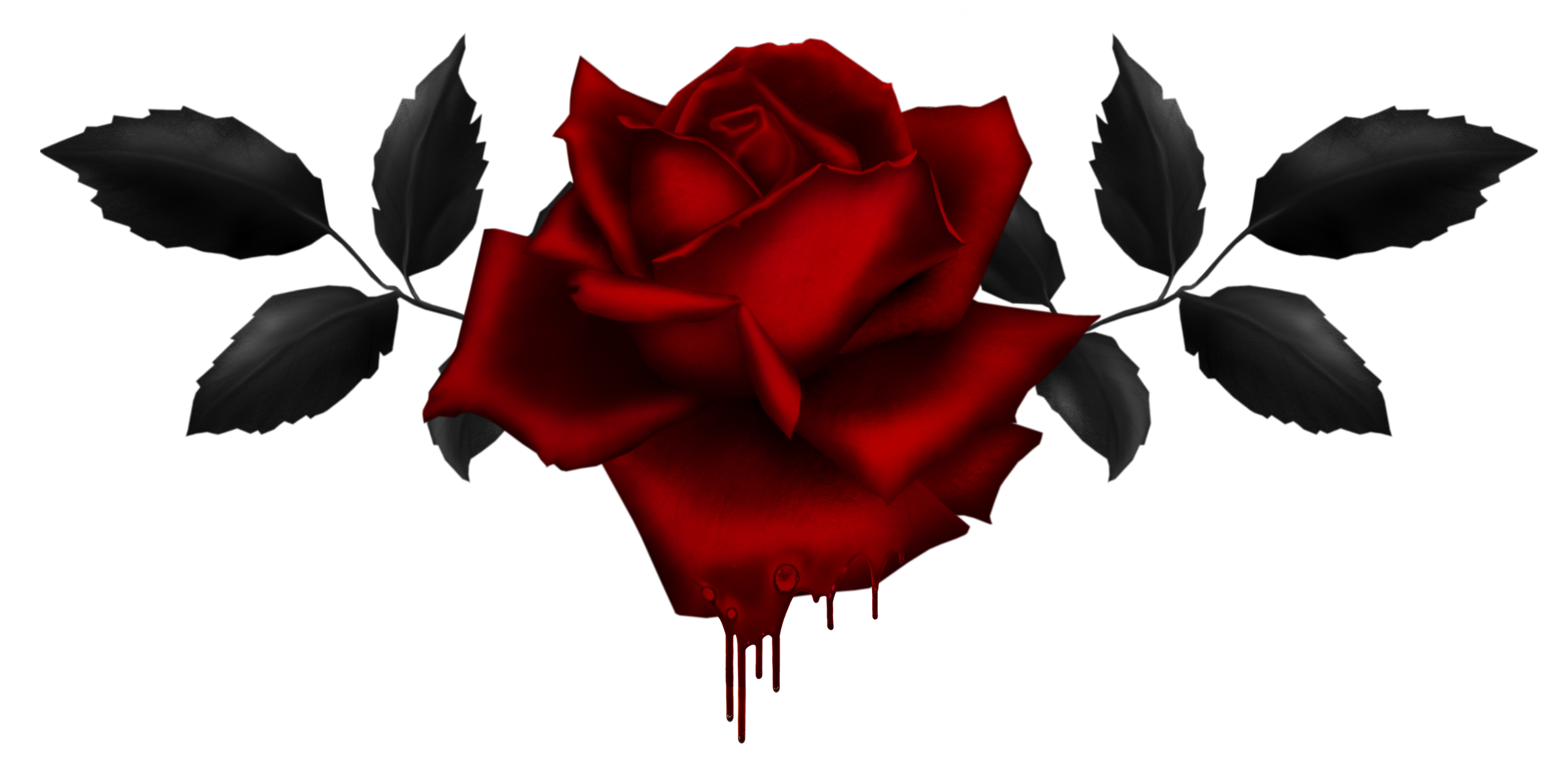 2544x1243 Gothic Rose PNG Image Mart