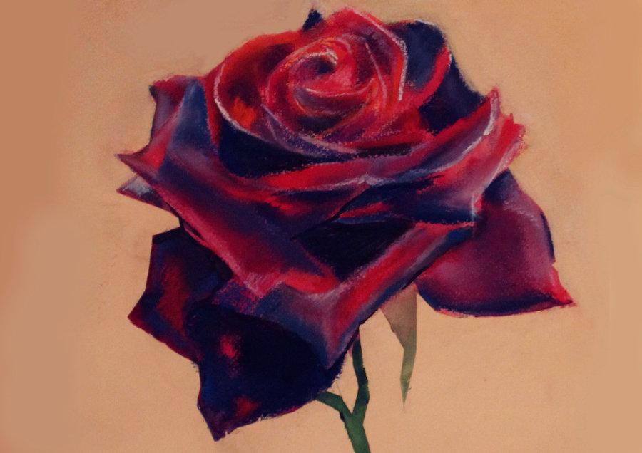 900x636 Gothic Rose By Marinamagic