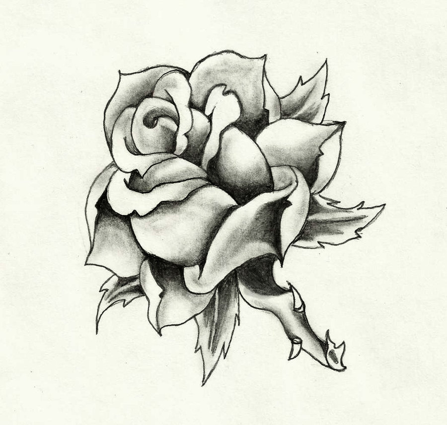 900x856 Traditional Rose By Mannaocculta