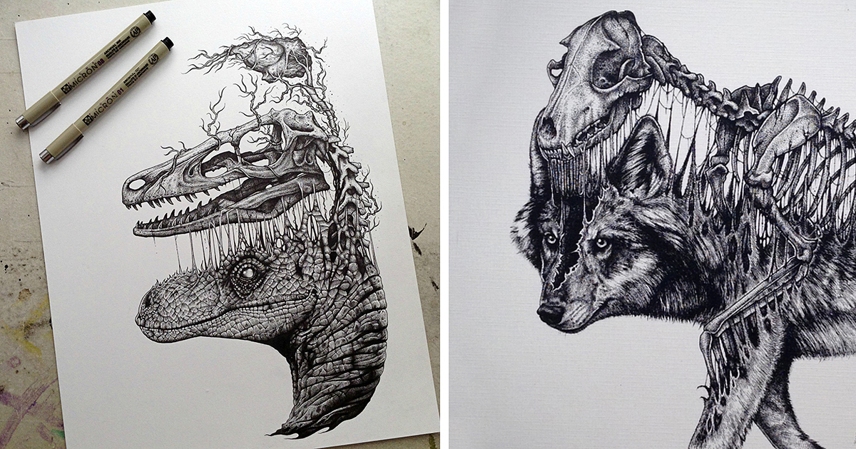 1200x630 animals leave their skeletons behind in stunning dark drawings by