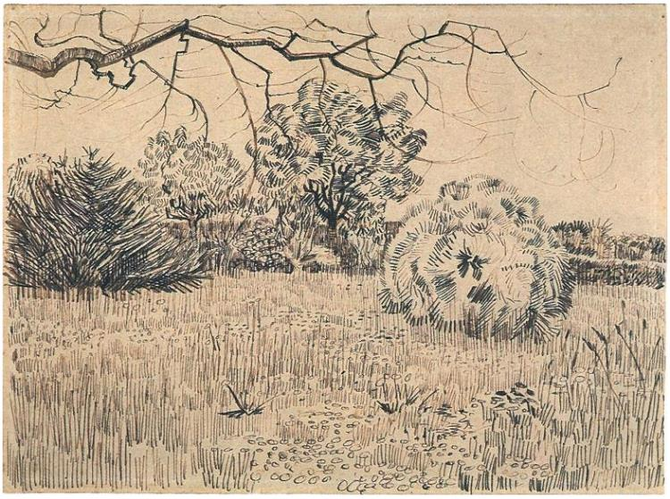 750x559 Field Of Grass With A Round Clipped Shrub By Vincent Van Gogh