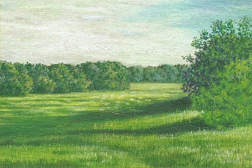 500x334 The Right Colors For Drawing Summer Grass