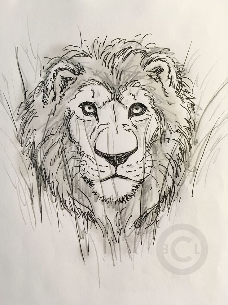 736x981 82 Best Brad Lawley's Sketch Book Images On Angry Bear