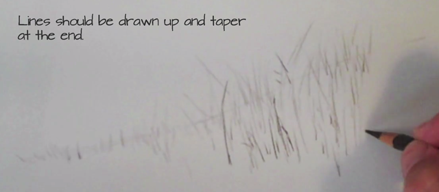 640x281 How To Draw Grass With Colored Pencils Video Tutorial