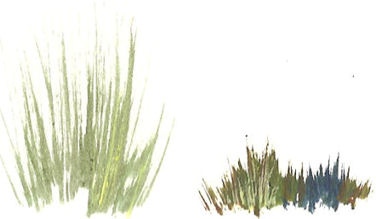 376x219 How To Paint Grass In Acrylics