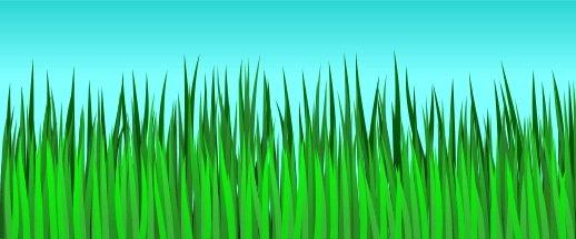 518x215 To Draw Grass