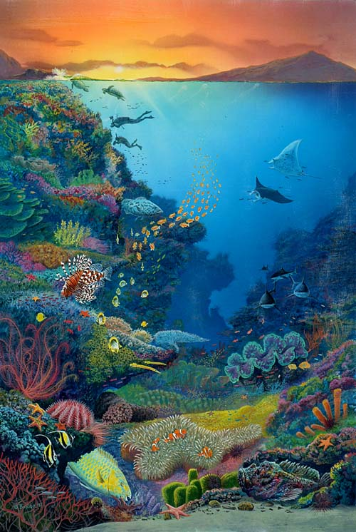 Captivating 500x746 The Incredible Great Barrier Reef Nemo#39s World Pinterest