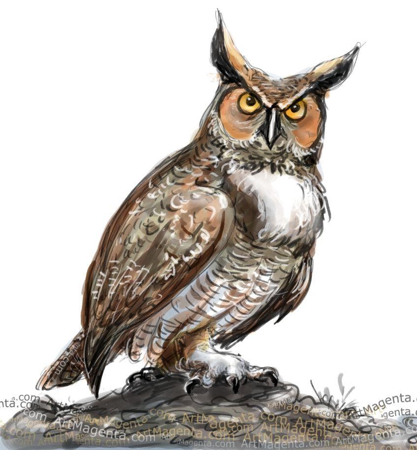847x913 Great Horned Owl Birds Horned Owl, Bird Drawings