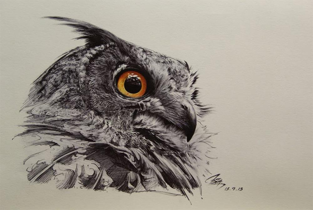 1000x672 Great Horned Owl Scene360