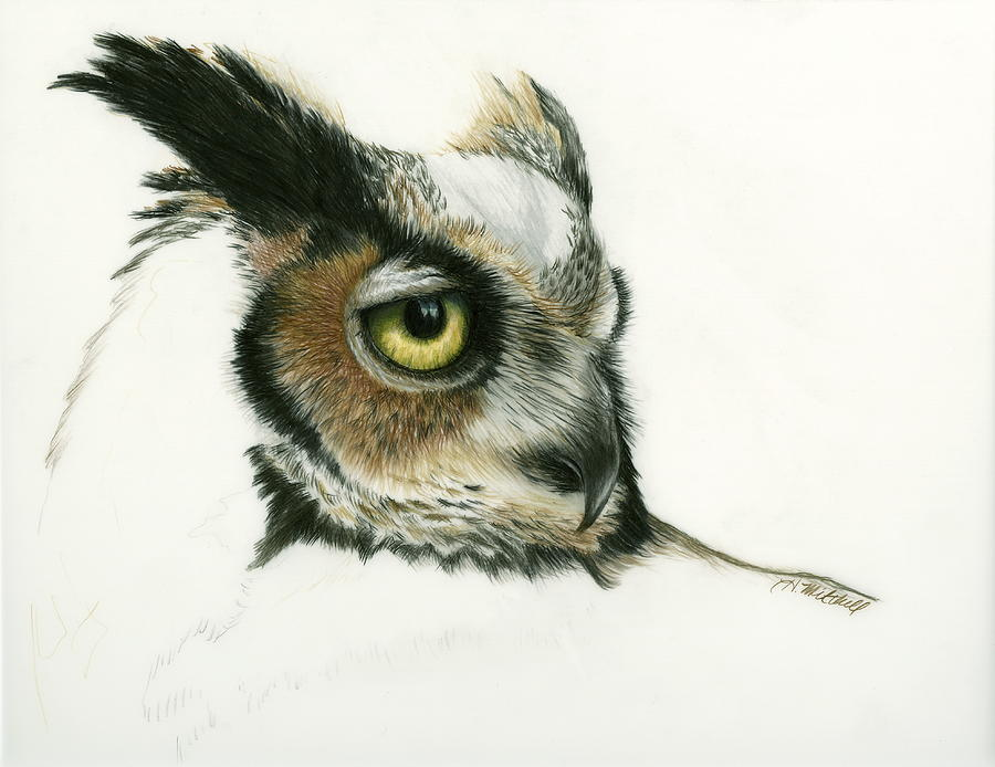 900x694 Great Horned Owl Drawing By Heather Mitchell