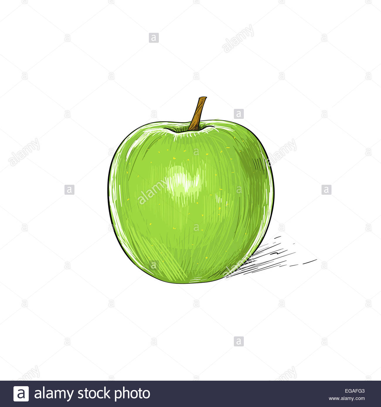 1300x1390 Green Apple Sketch Draw Isolated Over White Stock Photo 78907699