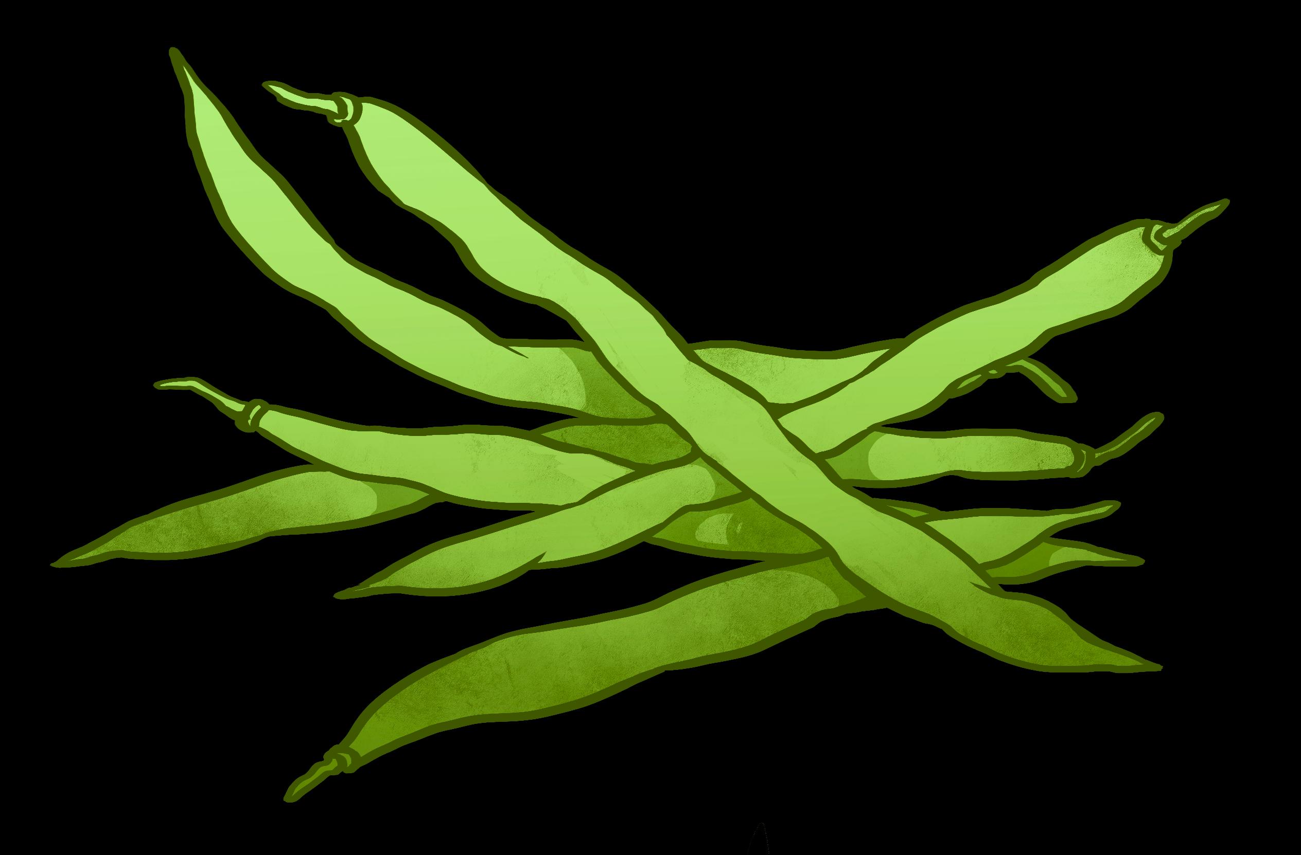 2528x1663 Green Beans Clipart