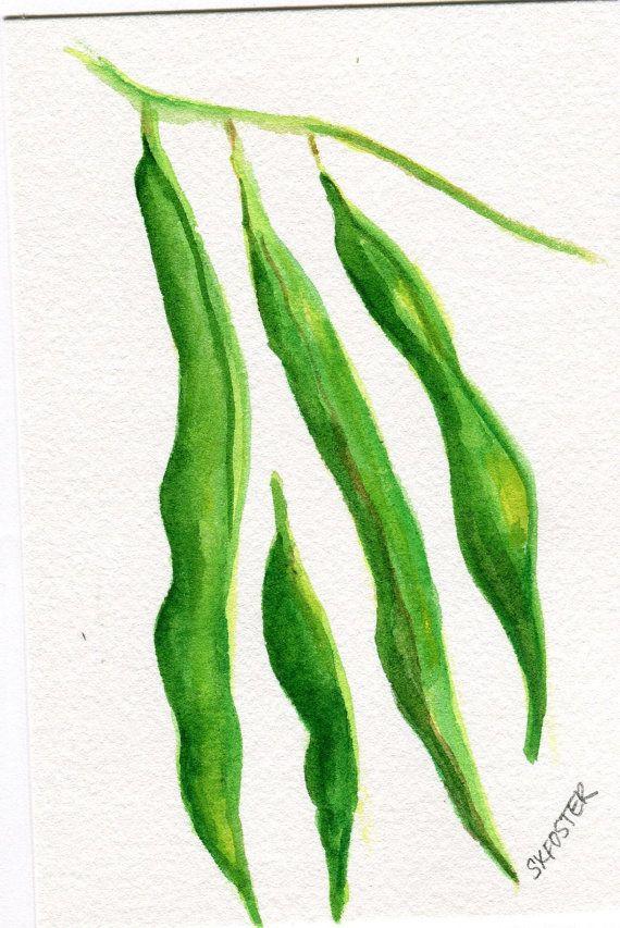 570x853 Green Beans Original Watercolor Painting, Watercolor Kitchen