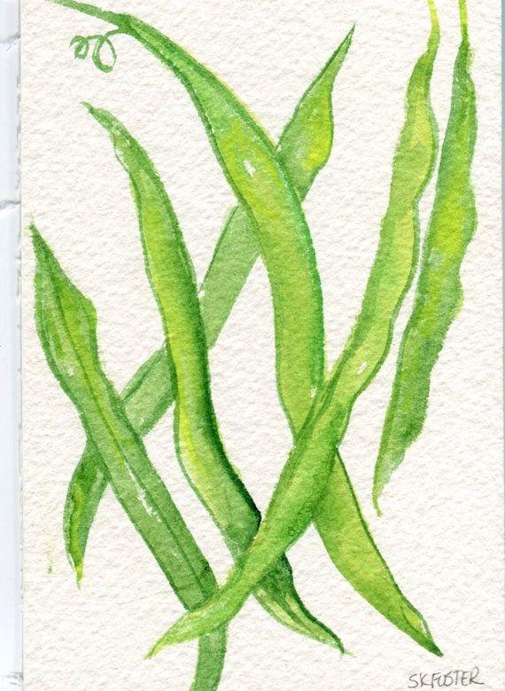 570x779 Green Beans Watercolors Paintings Original, Vegetable Watercolors