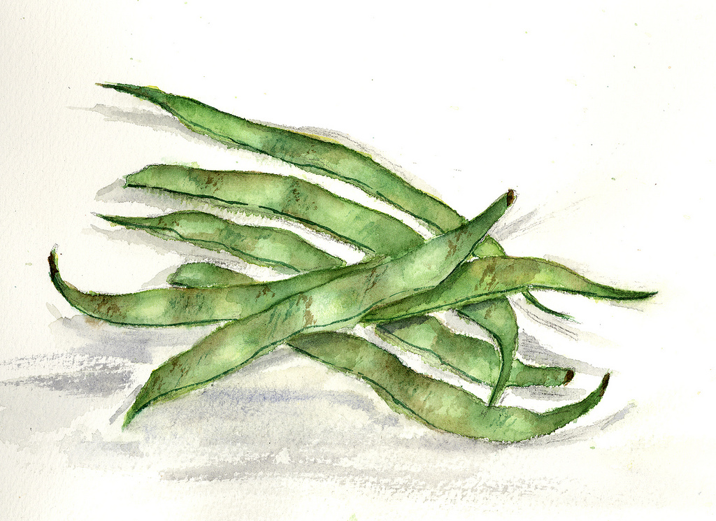 1024x745 Rebecca's Green Beans Daily Practice And Journal