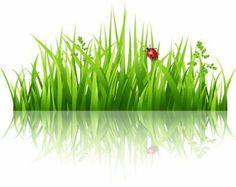 236x187 Cartoon Grass Cartoon Drawing Of Blades Of Green Grass