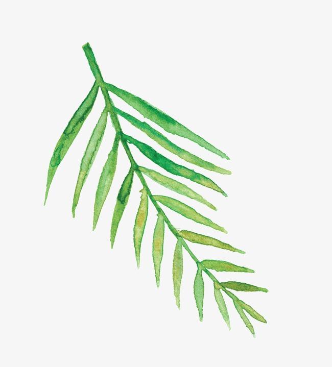 650x719 Drawing Decorative Greenery Patterns, Decorative Pattern