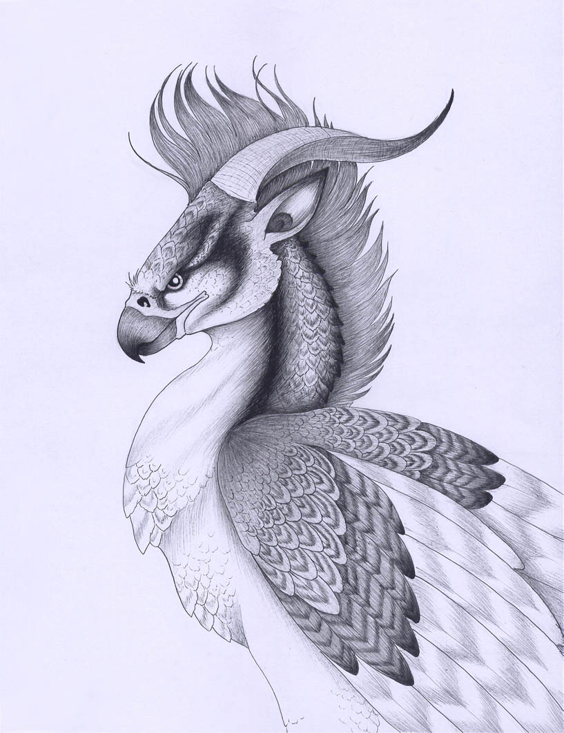 817x1061 Persian Griffin By Verreaux