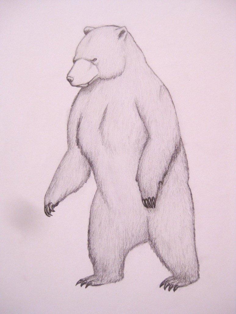774x1032 Standing Bear. By Ninthtome