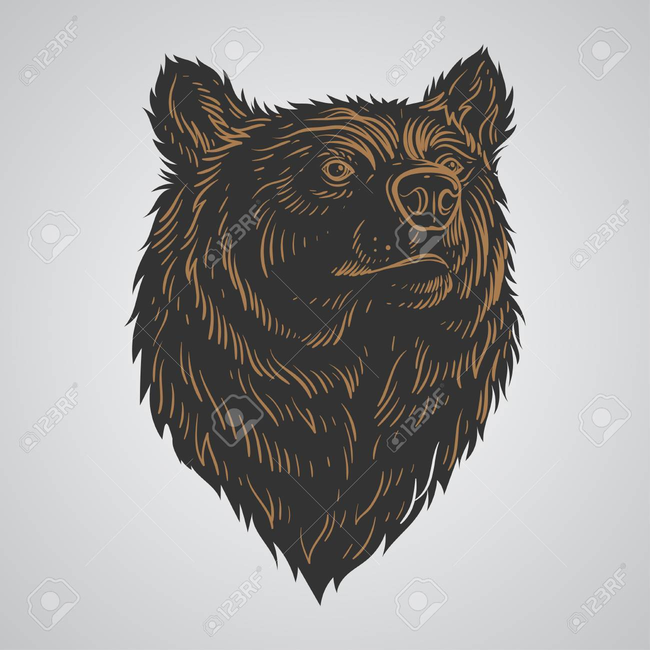 1300x1300 Bear Head Hand Draw Royalty Free Cliparts, Vectors, And Stock