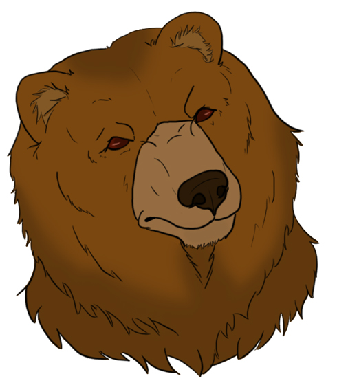 grizzly bear head drawing at getdrawings com free for personal use rh getdrawings com