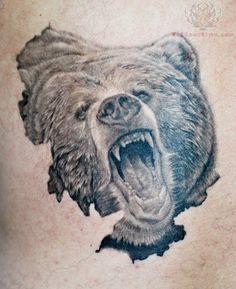 236x289 Bear Sketches Realistic Bear Drawing By Vempiretattoo