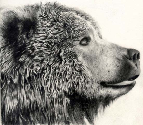 550x480 26 Pencil Drawings That Are Unbelievably Realistic Smosh
