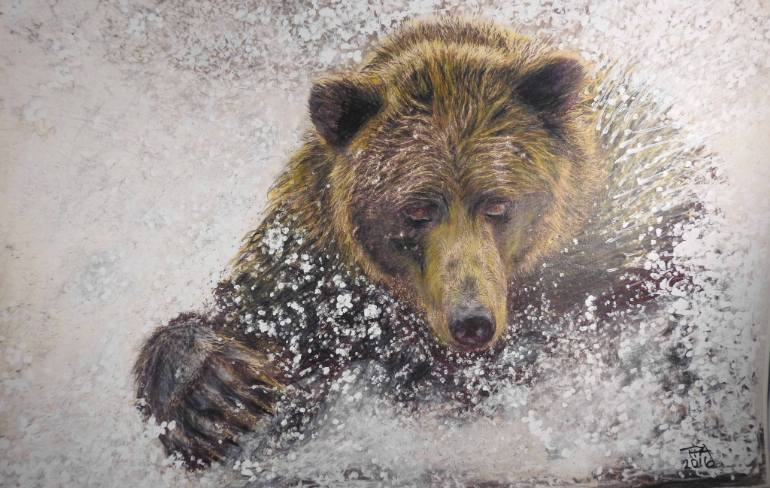 770x488 Saatchi Art Grizzly! Drawing By Paul Archer