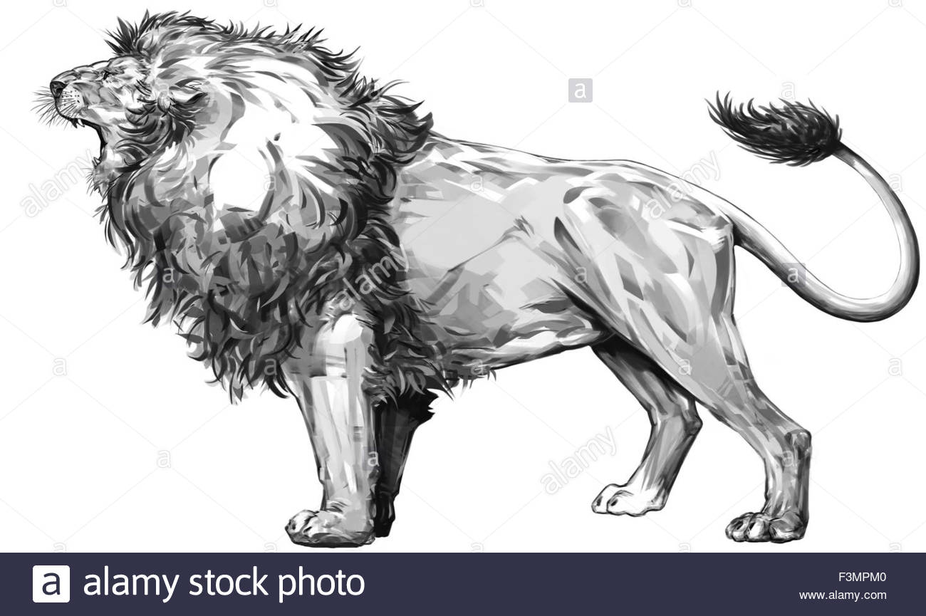 1300x865 Lion Standing And Roaring Stock Photo 88352656