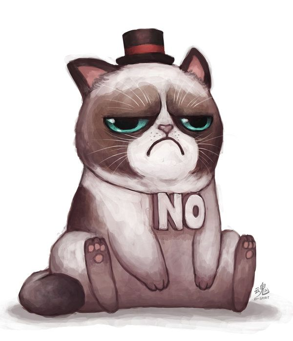 600x699 244 Best Grumpy Is Adorable!! Images On Grumpy Cat