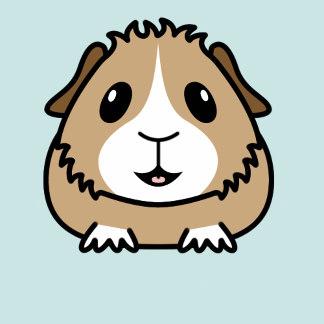 324x324 Cartoon Guinea Pig Pets