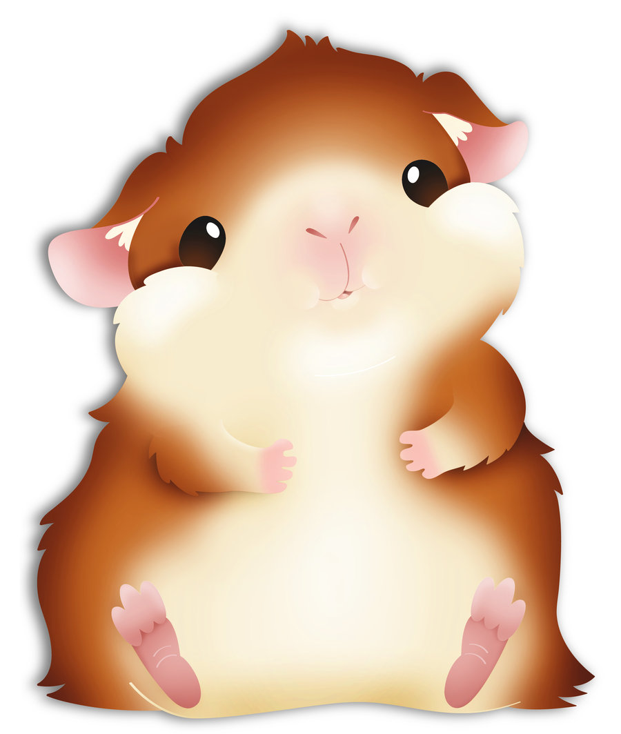900x1064 Fat Guinea Pig By See Past The Madness