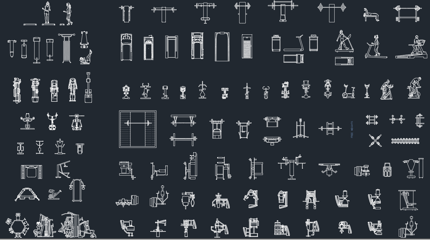 Gym Equipment Drawing At Getdrawings Com Free For