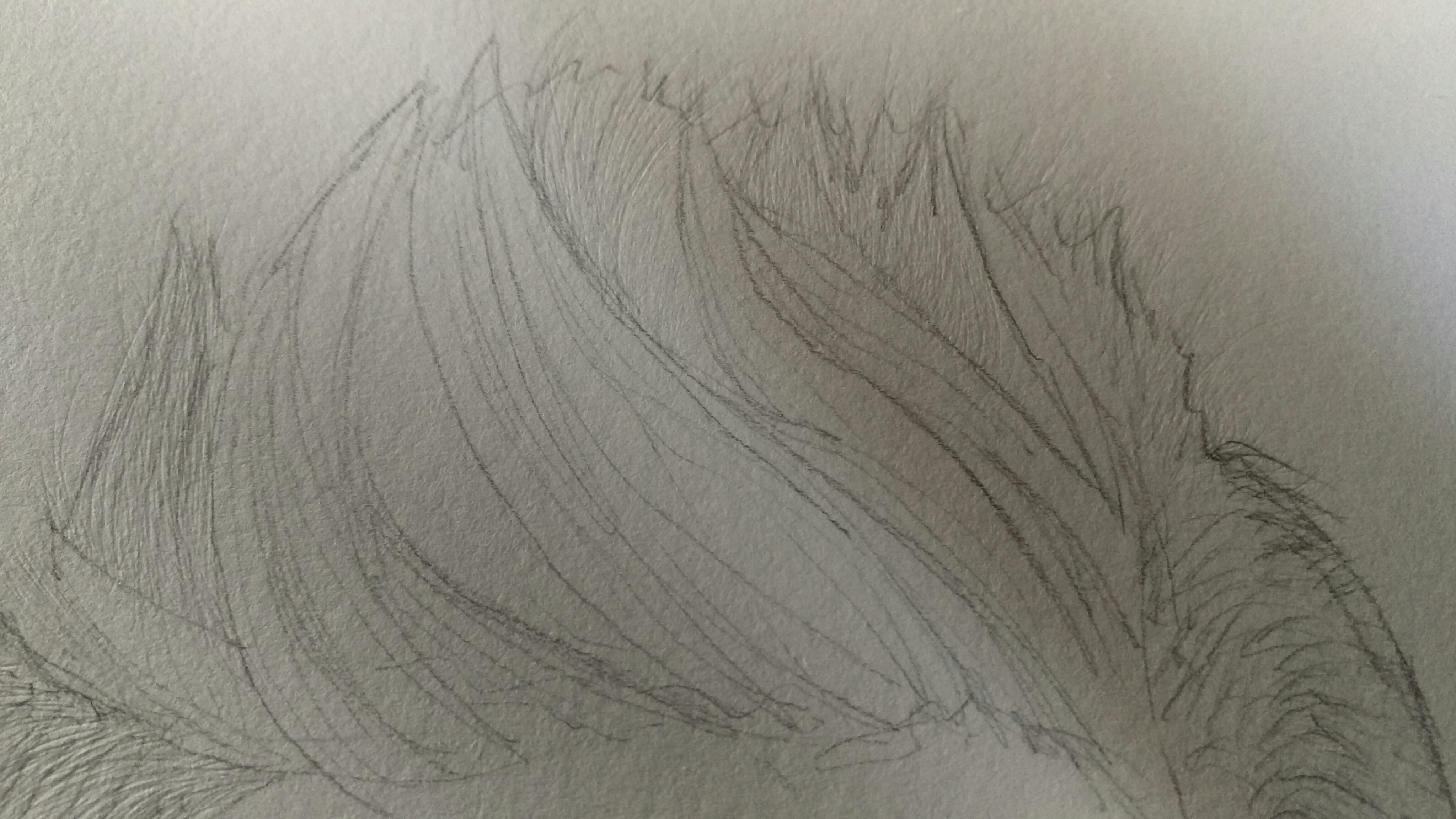 4096x2304 Drawing Realistic Male Hair