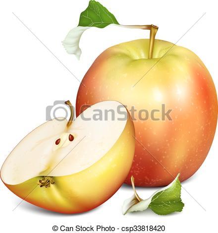 440x470 Whole Half Cut Apples. Whole Apple And Half Cut Apple . Vector