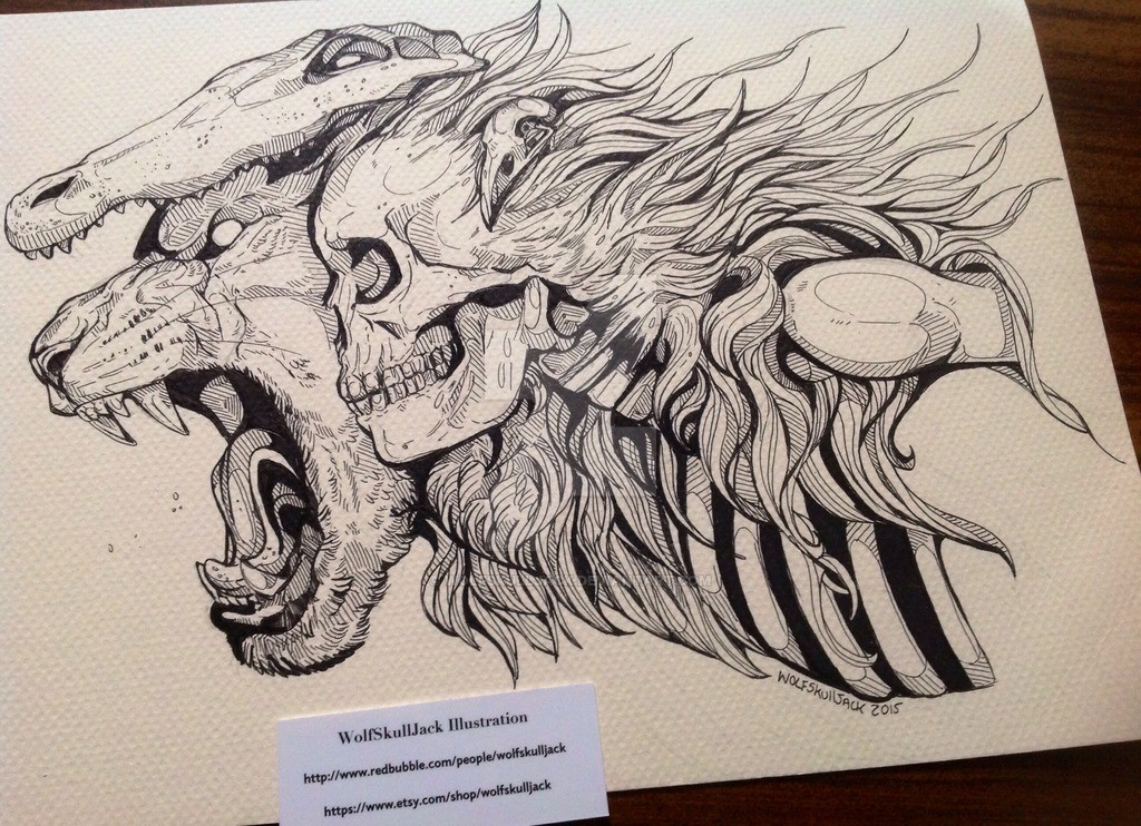 Half Skeleton Face Drawing at GetDrawings.com   Free for personal ...