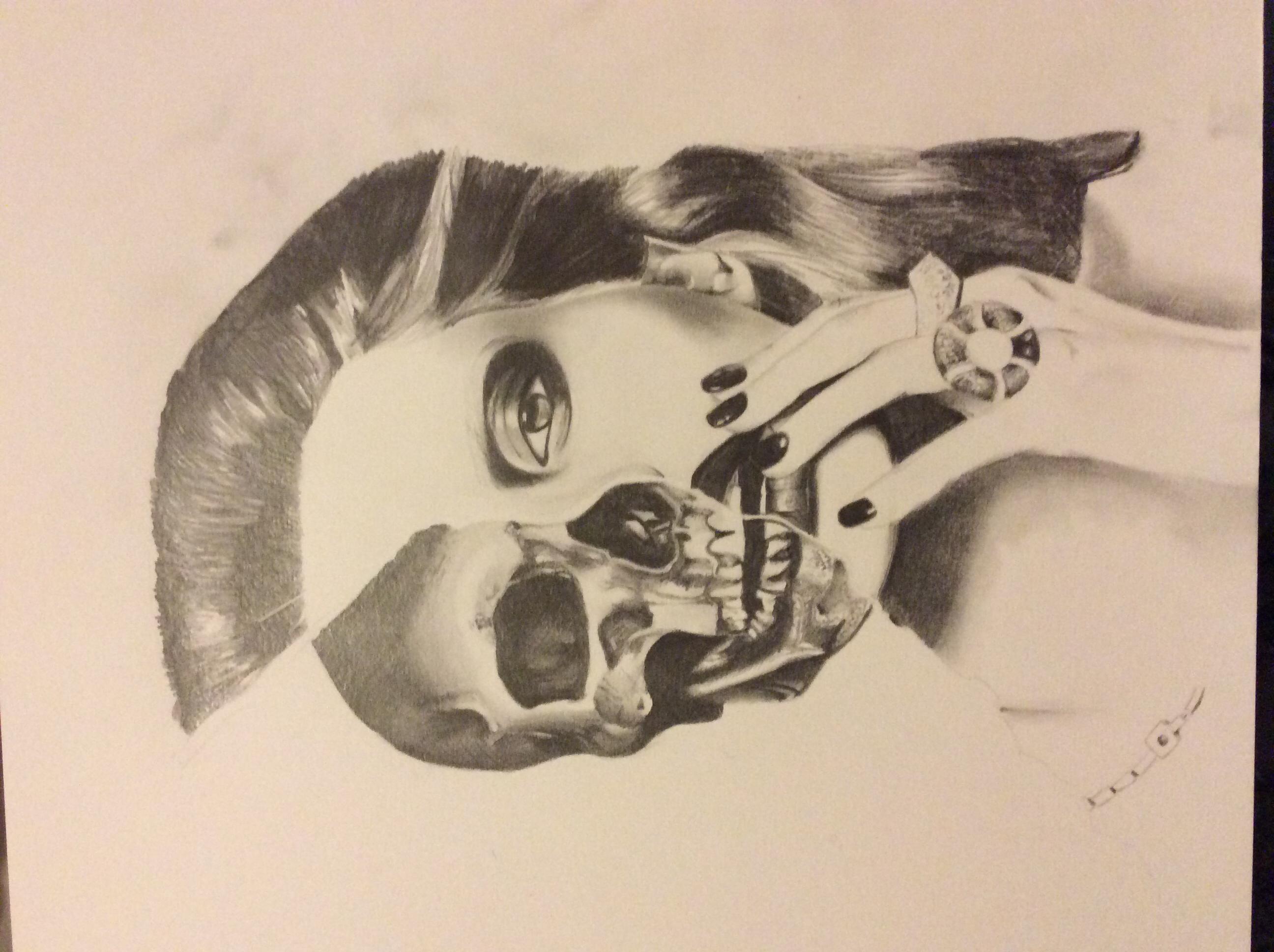 2592x1936 Half Skull, Half Face Drawing Art Half Skull