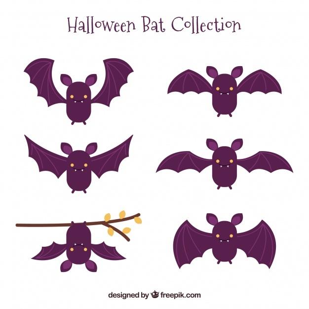 626x626 Bats Vectors, Photos And Psd Files Free Download