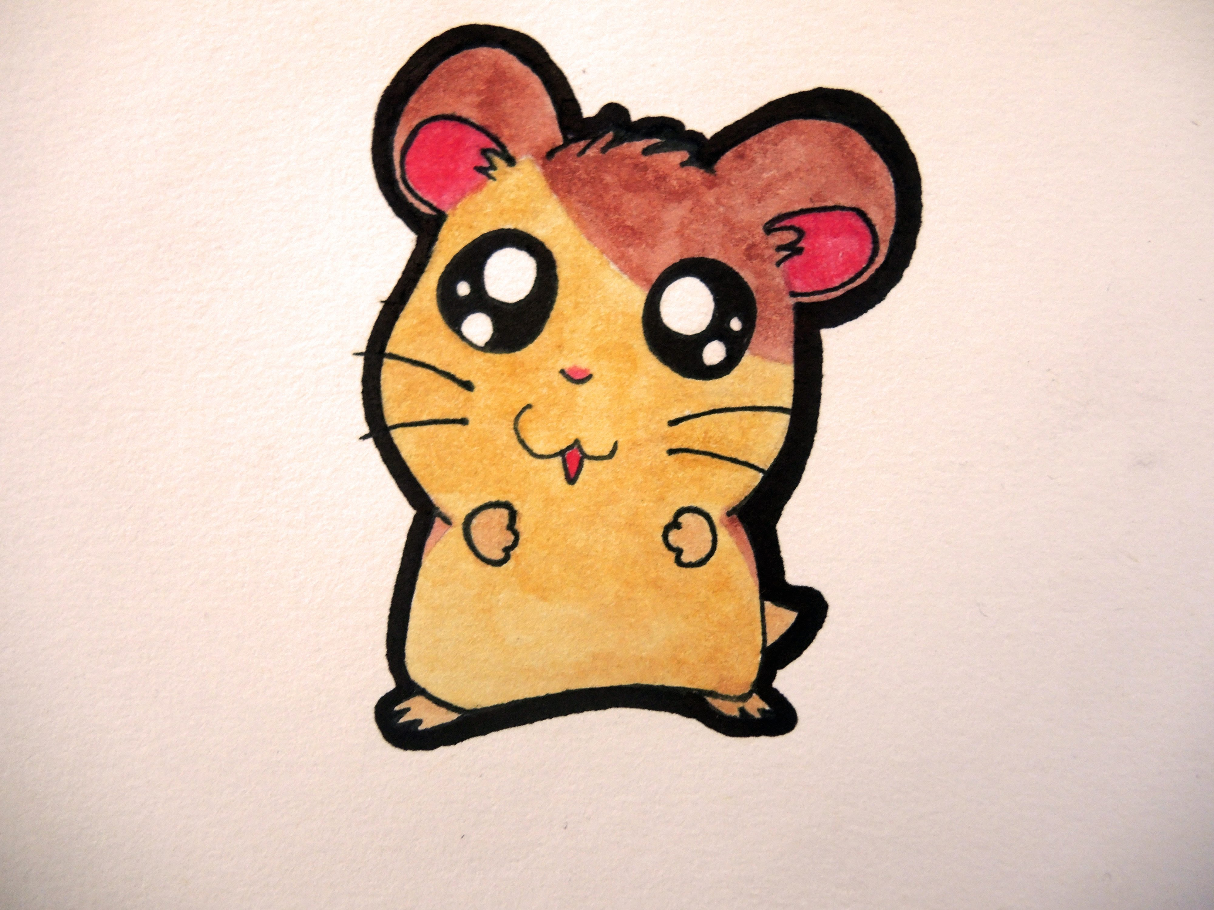 4000x3000 How To Draw A Cute Hamster (Hamtaro)