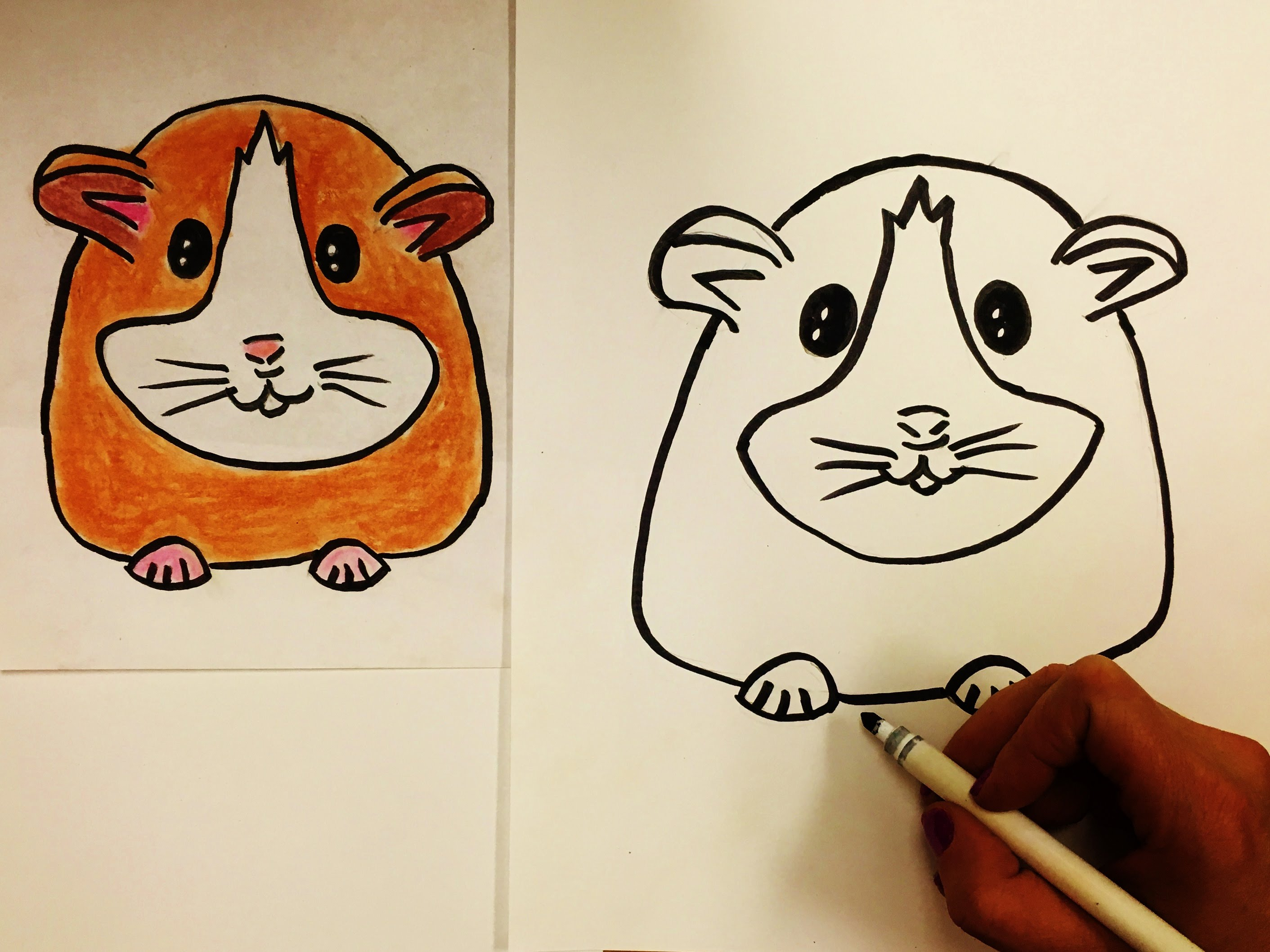 2823x2117 How To Draw A Hamster For Kids