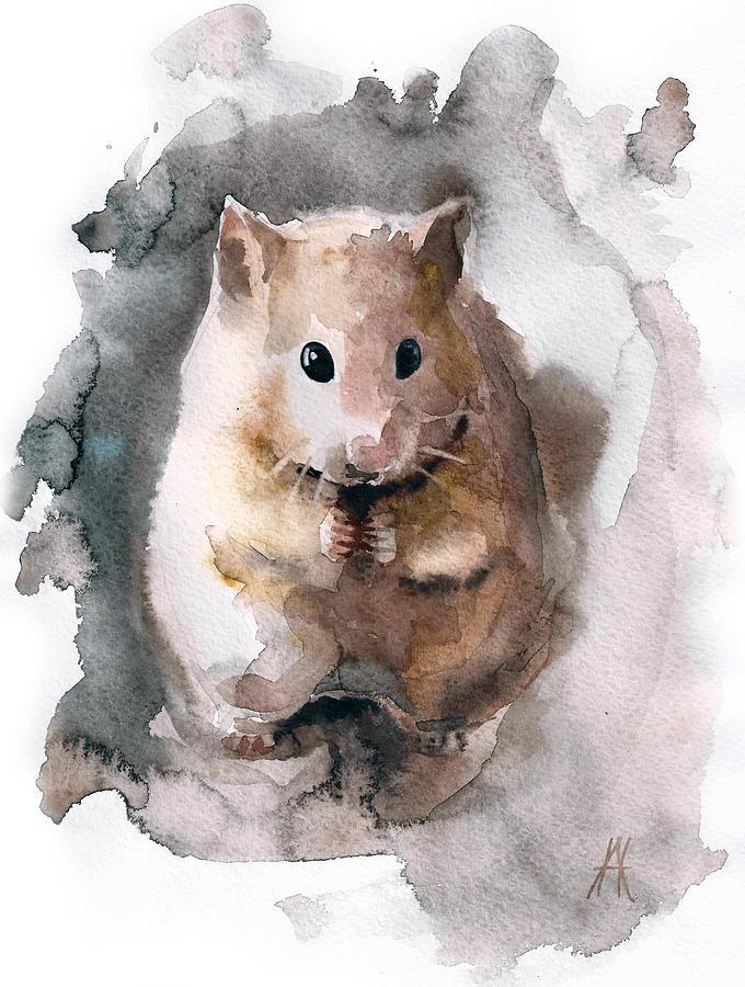 680x900 Syrian Hamster Drawing By Nadezhda Appolat