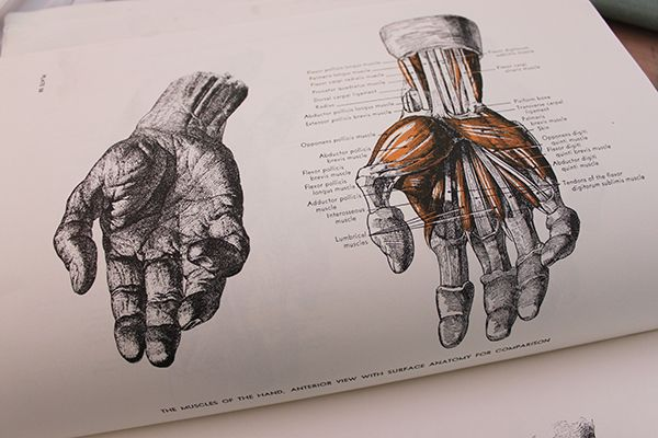 600x400 Are Your Drawings Of Hands Realistic How To Draw Lifelike Hands