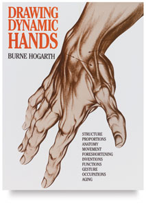 213x300 How To Draw Hands Basic Anatomy For The Artist