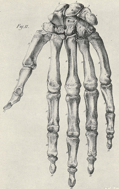 404x640 Figure Drawings Of Hands