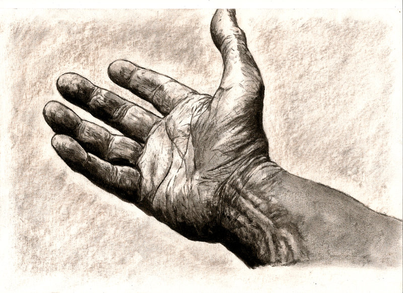 800x582 Hand Drawing By Mrsvein872