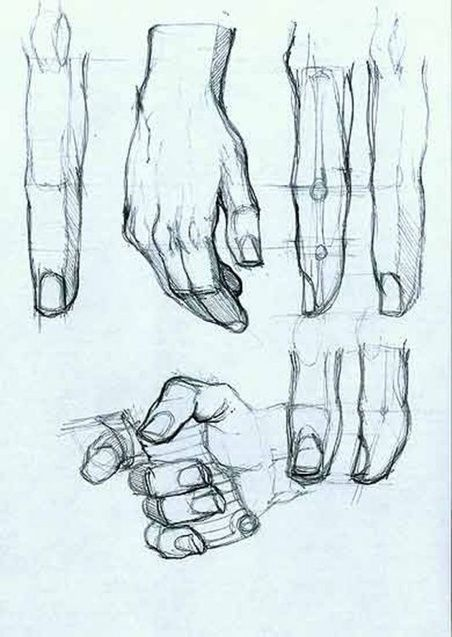 452x637 Hand Drawing Reference Drawing References And Resources Scoop