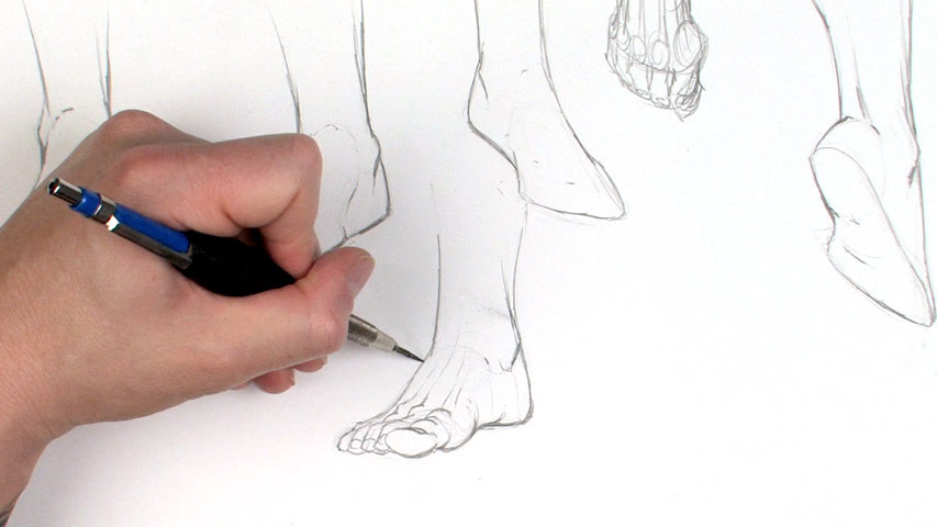 853x480 Dynamic Figure Drawing Volume 2 Hands And Feet The Gnomon Workshop