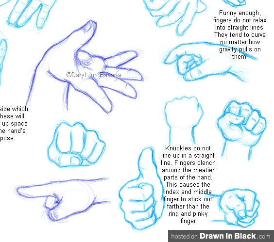 564x499 How To Draw Hands 35 Tutorials, How To'S, Step By Steps, Videos
